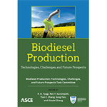 Biodiesel Production: Technologies, Challenges, and Future Prospects